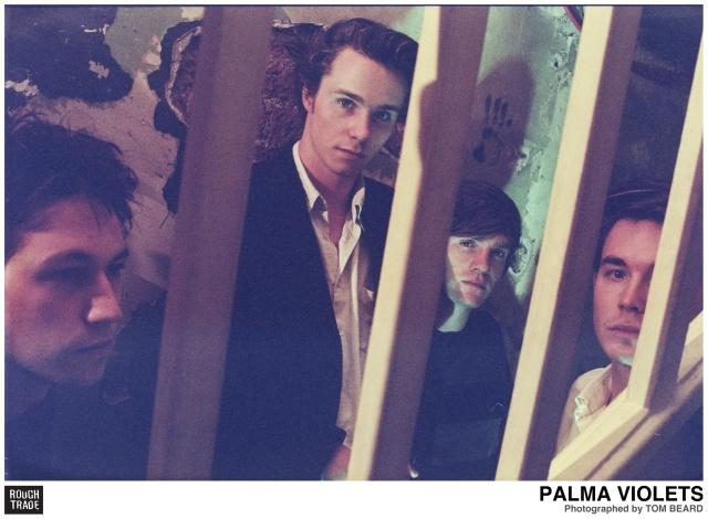 palmaviolets_pv03